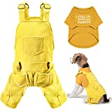 Pet Clothes Dog Jumpsuit Set 1 Piece Breathable Stylish Plain Color Dog Shirt and 1 Piece Dog Corduroy Jumpsuit Cozy Adorable Dog Outfit for Large Dogs French Bulldog (Yellow, Bright Yellow)