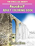 Aqueduct Adult coloring book for stress and anxiety: Aqueduct sketch coloring book Creativity and Mindfulness
