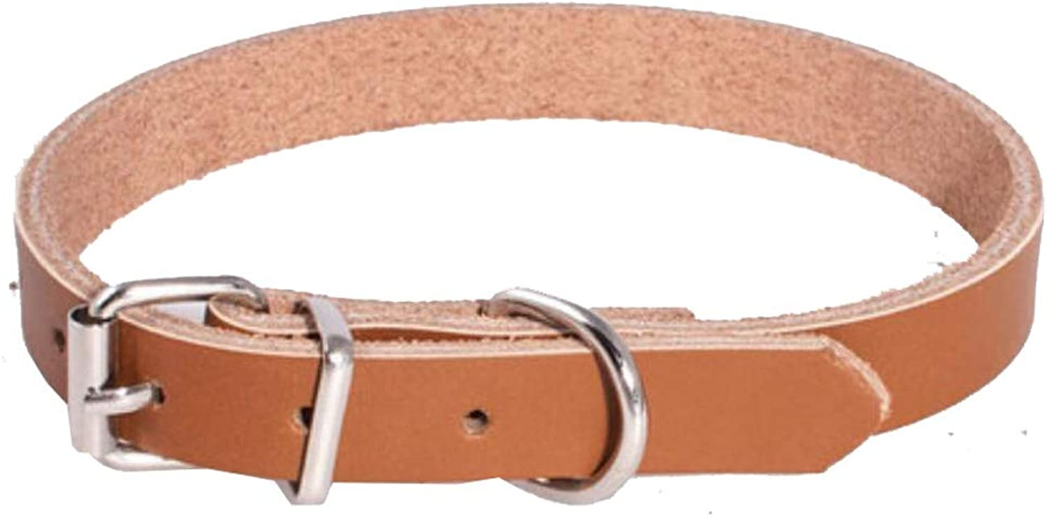 Pet Travel Bag Pet Collar, Black Out Dog Collar Portable Leather Cat Training, Traction Rope, 1.8CM Wide (color   Brown XL)