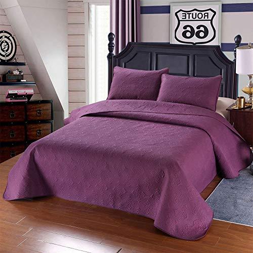 Nbibsaacy Colcha Edredón Acolchada Vintage 100% Algodón Patchwork 3 Piezas Conjunto Flor Verano Colcha de Aire Acondicionado Diseño de cobertor Ligero para Primavera y Verano,Purple,Queen