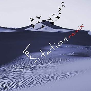 Levitation (feat. E-Qu, Peter Ries) [E-Qu Remix]