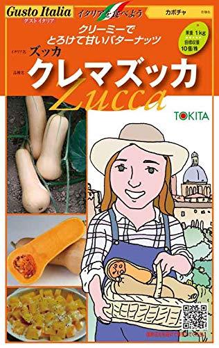 【種子】 Gusto Italia 「クレマズッカ」 バターナッツカボチャ トキタ種苗のタネ