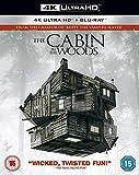 Cabin In The Woods. The (2 Blu-Ray) [Edizione: Regno Unito] [Italia] [Blu-ray]