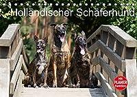 Hollaendischer Schaeferhund (Tischkalender 2022 DIN A5 quer): Wunderschoene Fotos der beeindruckenden Hollaendischen Schaeferhunde (Geburtstagskalender, 14 Seiten )