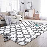 Noahas Soft Area Rugs for Bedroom Living Room Shaggy Patterned Fluffy Carpets for Nursery Baby Rooms Silky Smooth Fuzzy Kids Play Mats Christmas Home Decor Rug, 5ft x 8ft, White