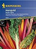 Bunter Mangold 'Bright Lights'