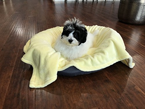 """Higher Comfort Super Soft Pet Blanket for Small Dogs, Puppies, Cats & Kittens - Youthful Yellow Pet Blanket - 30"""" x 40"""" - Great for Pet Beds and Carriers + Crate Training eBook"""