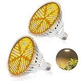Plant Light, LED Grow Lights 100W Full Spectrum UV E27 Grow Lamp Gro Lamps Bulbo para plantas de interior, carpa de cultivo, invernadero, flores, horticultura, plantas hidropónicas - 2 Pack