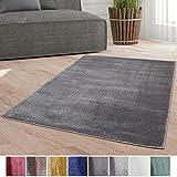 Taracarpet Weicher Kurzflor Designer Teppich modern für Wohnzimmer
