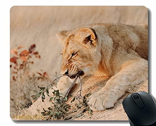 Podkładka pod mysz z krawędzią blokującą, Lion Animal Predator 202270 Podkładki pod mysz