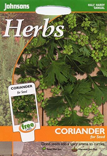Portal Cool Johnsons Seeds - Paquet Pictorial - Herb - Coriandre pour Les semences - 150 graines
