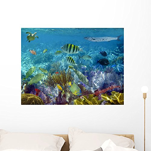 Wallmonkeys Caribbean Reef Tropical Fishes Underwater Wall Decal Peel and Stick Graphic WM325851 (36 in W x 27 in H)
