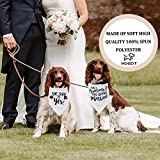Humans are Getting Married Dog Bandana