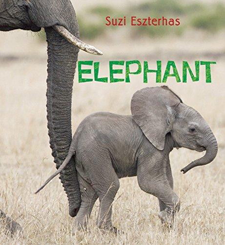 Elephant (Eye on the Wild)