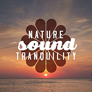 Nature Sound Tranquility