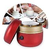 twsoul mini ruota in ceramica,0-1500 giri/min macchina per ceramica elettrica,giradischi elettrico strumento per argilla fai-da-te con vassoio,per adulti bambini ceramica art