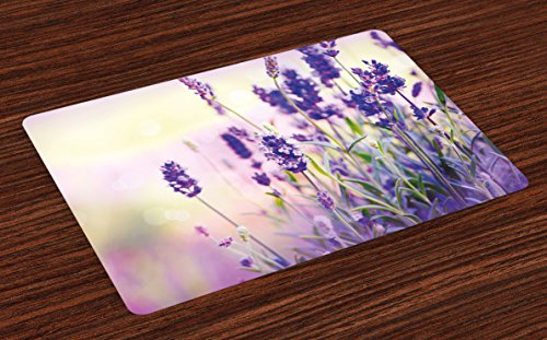 Lunarable Lavender Place Mats Set of 4, Dreamlike Spring Day with Fresh Blossoms Aromatic Delicate Wild Flowers, Washable Fabric Placemats for Dining Room Kitchen Table Decor, Lavender Lilac