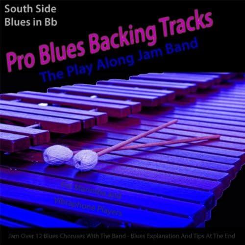 Play Along Jam Band