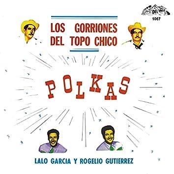 Polkas (Instrumental)