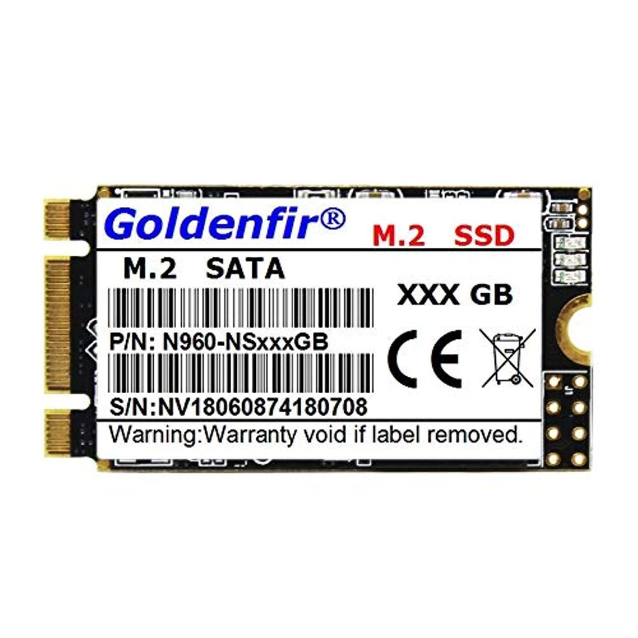 航海飢えたそれによってLeoie Goldenfir M.2 SATA 2242 SSD ソリッドステートドライブ ノートパソコン デスクトップ用, PEL_04EXYU9Y
