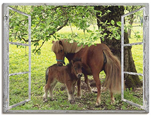 Artland Leinwandbild Wandbild Bild auf Leinwand 80x60 cm Wanddeko Fensterblick Fenster Pferd Pony Natur Wiese Landhaus Baum Ausblick S8HN