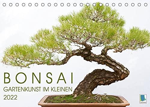 Bonsai: Gartenkunst im Kleinen...