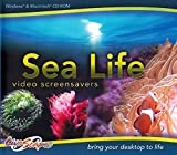 Sea Life Video Screensavers