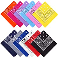 12-Pack 100% Cotton Multi-Purpose Double Sided Paisley Square Scarf