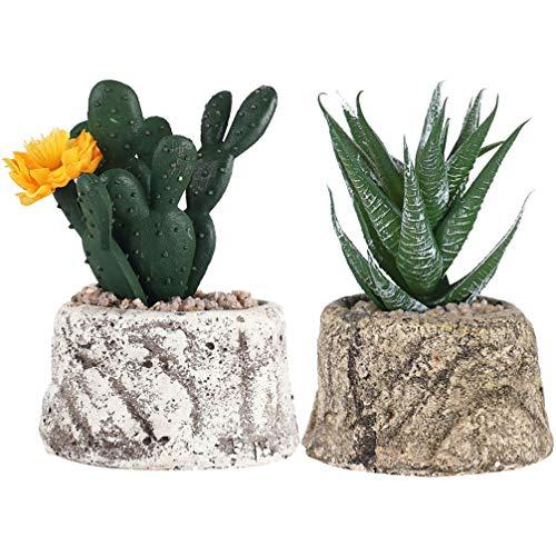 KESYOO 2 Pcs Plantas Suculentas Artificiais Em Vasos Criativo Mini Decoração Suculenta para Simulação Bonsai Ornamento da Paisagem (Cactus E Aloe)