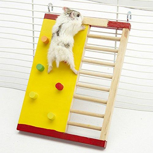 Kleintier Aktivität Spielzeug Aktivität Hamster Turnhalle Rutsche aus Holz