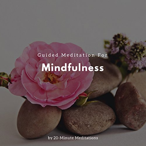 Guided Meditation for Mindfulness cover art