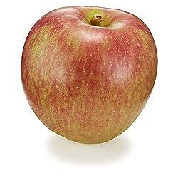 国産 つがる りんご 1個