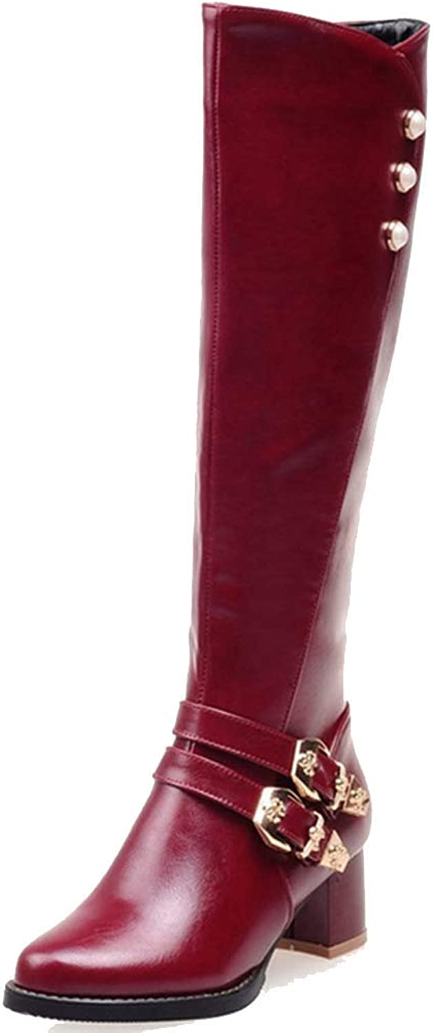 Elsa Wilcox Women's Mid Calf Pointed Toe Riding Boots Knee High Boots Wide Calf Buckles Chunky Low Heel Side Zipper Tall Dress Boots