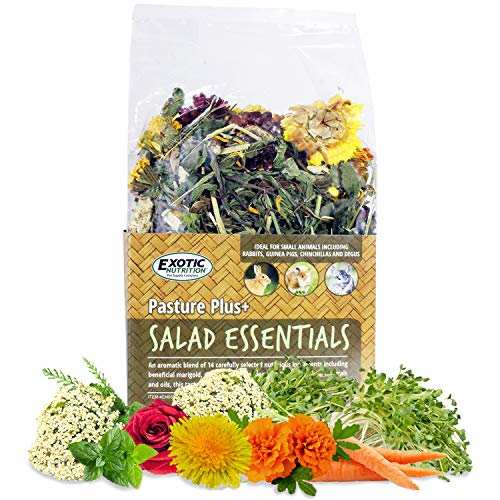 Pasture Plus+ Salad Essentials - Healthy Natural High-Fiber Dried Flower & Herb Treat - Squirrels, Guinea Pigs, Rabbits, Chinchillas, Prairie Dogs, Degus, Hamsters, Gerbils & Other Small Pets
