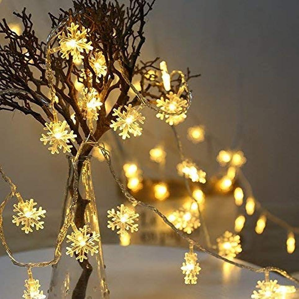 雰囲気提案するうまれた雪型イルミネーションライト LEDフェアリーライト 6m 40球LEDストリングライト USB式 屋内屋外 クリスマス飾り 結婚式 ホームパーティー お誕生日パーティー クリスマスなどに最適 電飾(暖かい色)
