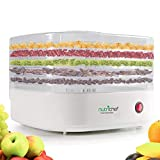 Deni Food Dehydrators - Best Reviews Guide