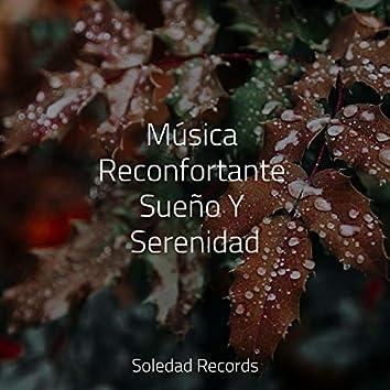 Música Reconfortante Sueño Y Serenidad