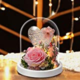 shirylzee Enchanted Rose, Beauty and The Beast Rose with LED Light in Glass Dome on Wood Base, USB Charging lamp, Home/Office Decorations, Anniversary,Christmas,Birthday,Valentine's Day