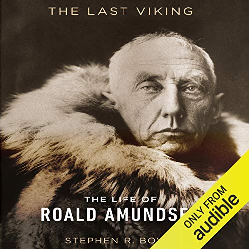 The Last Viking audiobook cover art