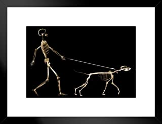 Poster Foundry X Rray of Dog on Leash Pulling Master Owner Photo Matted Framed Art Print Wall Decor 26x20 inch