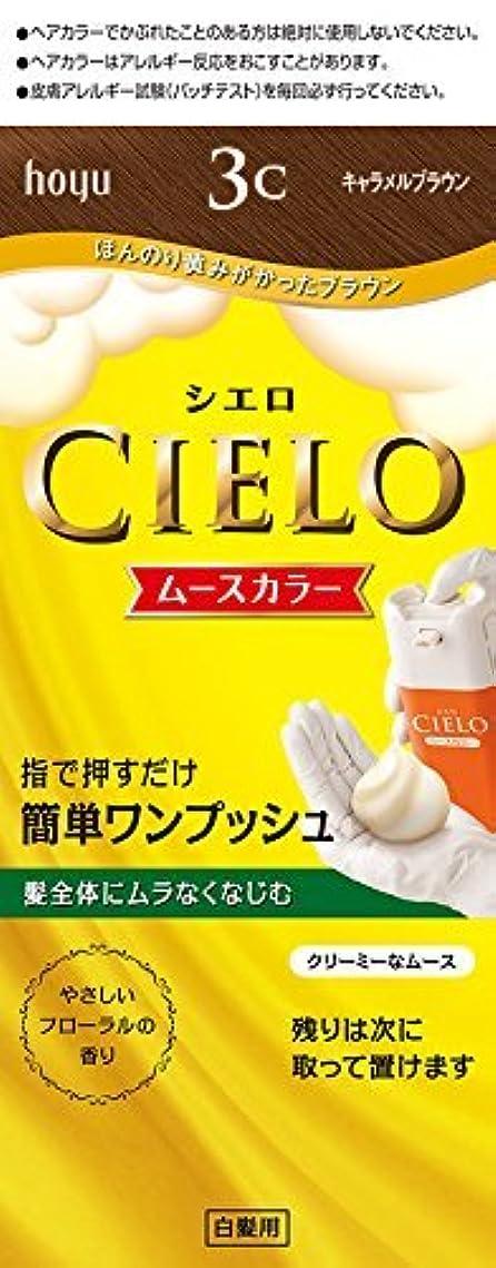 やる薄汚い夕食を食べるホーユー シエロ ムースカラー 3C (キャラメルブラウン)×6個