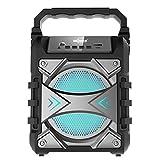 GO-ROCK Altavoz portátil con función Bluetooth (4.2+EDR) y Karaoke. Potencia 5W. con Luces Disco, Entrada Tarjeta TF y Entrada USB. Incluye micrófono y Cable de Carga. (Plateado)