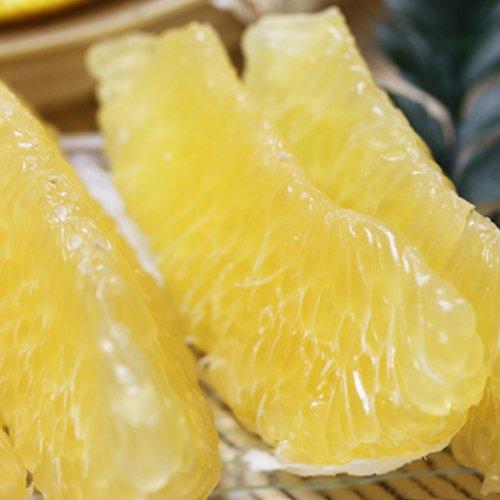 「お得ナダオレンジ5」皮むき簡単食べ易い冷やして食べるとひんやりジューシー(河内晩柑,かわちばんかん) フルーツ 果物 通販 5kg