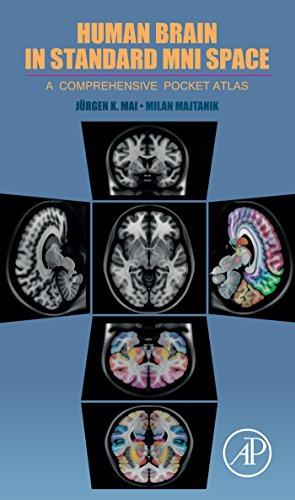 Human Brain in Standard MNI Space: A Comprehensive Pocket Atlas (English Edition)