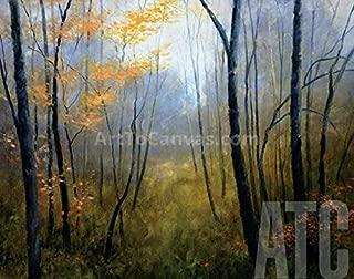 ArtToCanvas 28W x 22H inches : Woodland Mist by Robert Striffolino - Framed Canvas