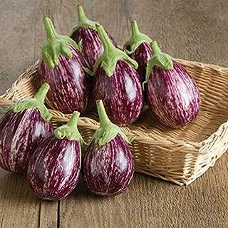 Calliope F1 Hybrid Eggplant Seeds (20 Seed Pack)