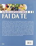 Zoom IMG-1 enciclopedia del fai da te