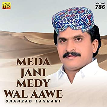 Meda Jani Medy Wal Aawe, Vol. 786