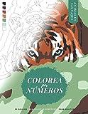 Colorea por Números: Animales Salvajes - 50 Dibujos para Colorear Numerados para Adultos