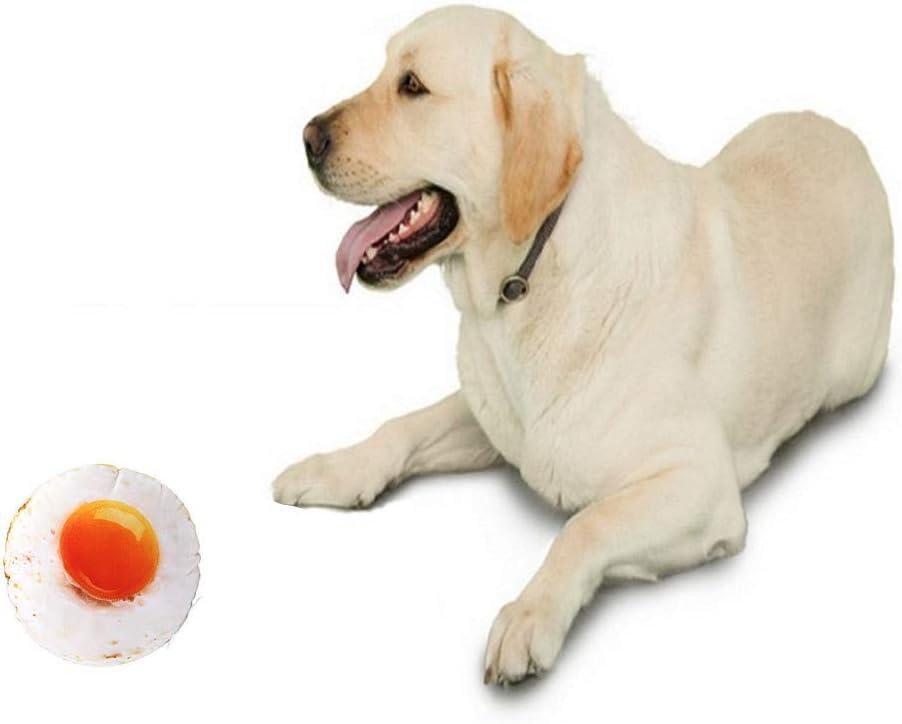 HEELPPO Giocattoli per Cani Giocattoli da Masticare Simulazione Giocattoli Coscia di Pollo Pet Squeak Toys Giocattoli da Masticare per Cani Stampa Digitale 3D Gamberetti Cosce di Pollo Uova a
